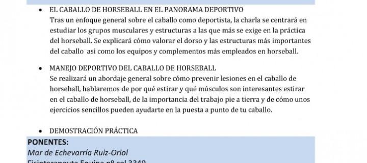 Próximo curso 25 junio 2016: Cuidado músculo esquelético del caballo de horseball